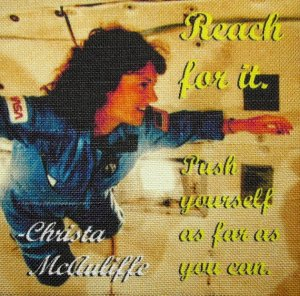 Christa McAuliffe Reach